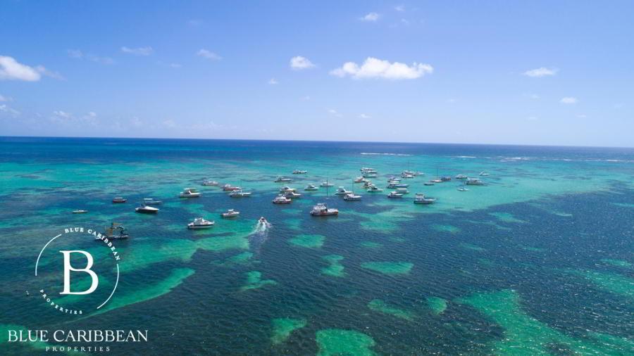 Playa Coral - Oceanfront condo - Punta Cana property 1