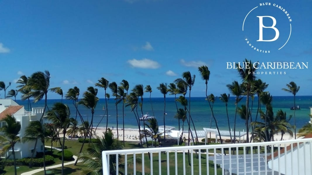 Beach property - Property beach - beach condo rgfdhtry7